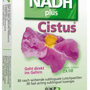 Nadh mit Cistus Zistrose hilft dem Immunsystem