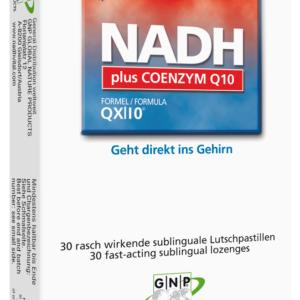 NADH plus CoenzymQ10